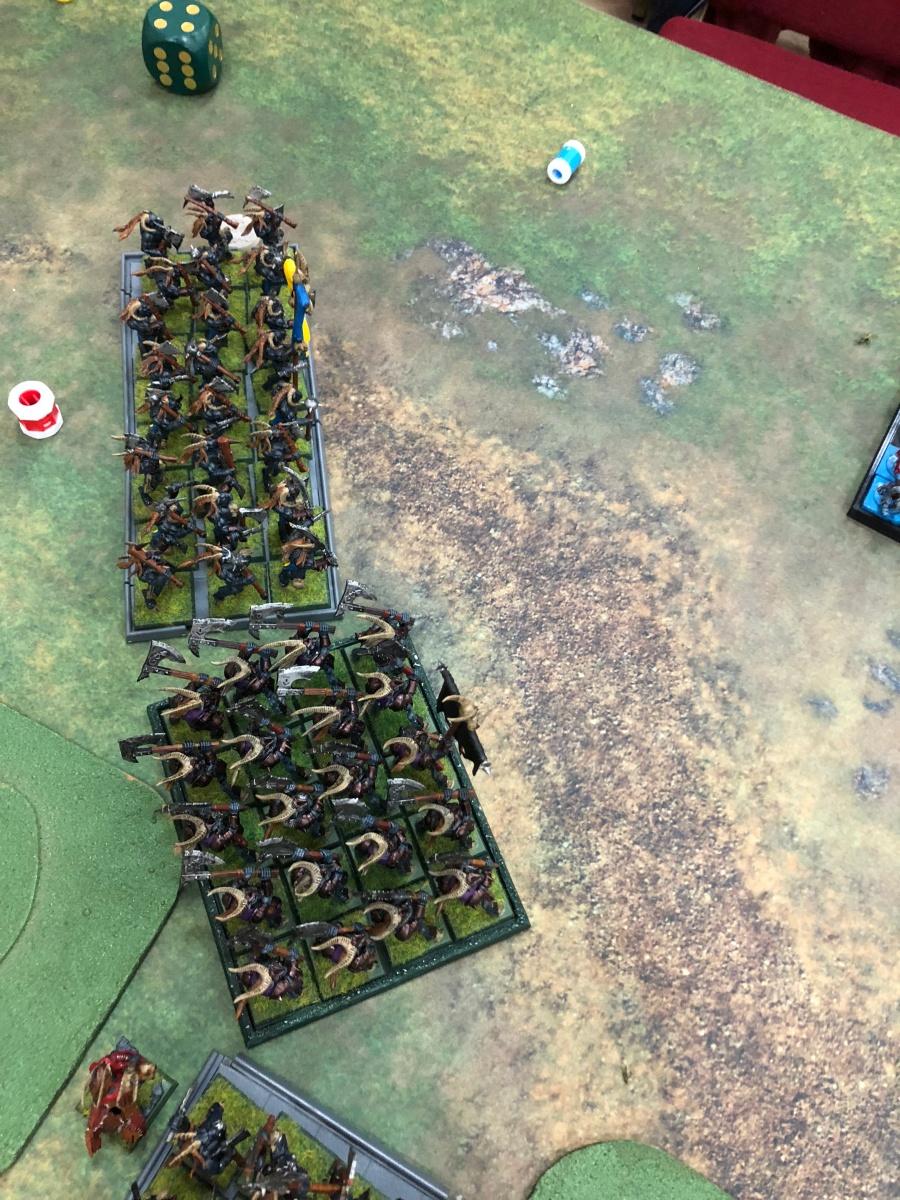 29 T3 herd